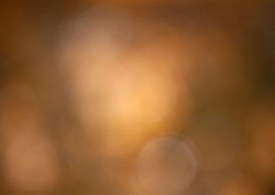Untitled 0616ywy2890