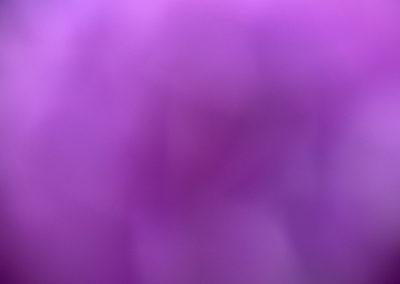 Untitled 0617MIT5292