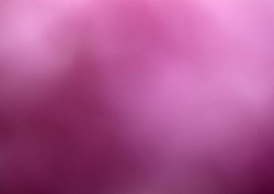 Untitled 0617MIT5301